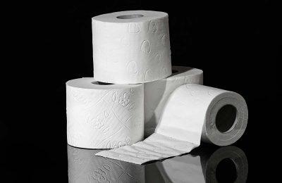 Quel papier toilette pour un sanibroyeur ?